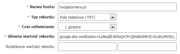 Client Panel - Add a new TXT record - Form - Use the authorization code when creating the TXT record