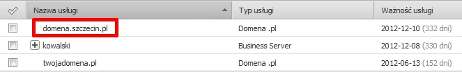 Panel klienta - Usługi - Wybierz i kliknij w nazwę domeny
