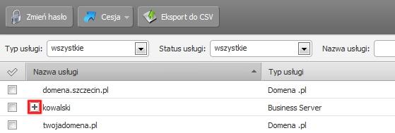Panel klienta - Usługi - Z listy usług wybierz nazwę serwera i kliknij na ikonę Plusa