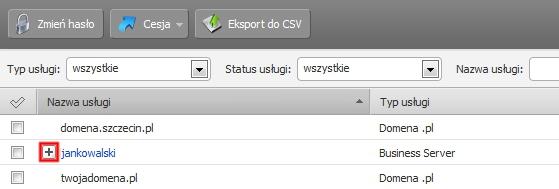 Panel klienta - Usługi - Kliknij znak Plusa obok nazwy serwera