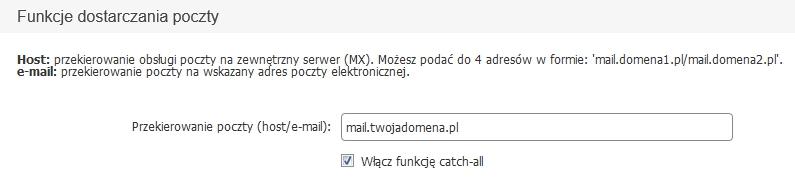 Panel Klienta - Konfiguracja domeny - Funkcje dostarczania poczty - Ustaw Przekierowanie poczty(host/e-mail)
