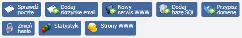 Panel Klienta - Sekcja informacja o zalogowanej usłudze - Przyciski, które wyświetlają się po zalogowaniu się do usługi typu serwer
