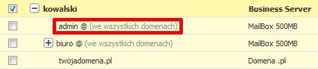 Panel klienta - Usługi - Lista usług - Z listy usług powiązanych technicznie z wybranym serwerem kliknij nazwę konta