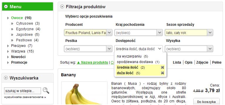 Sklep internetowy - Filtracja produktów - Przykład rozmieszczenia modułu na stronie