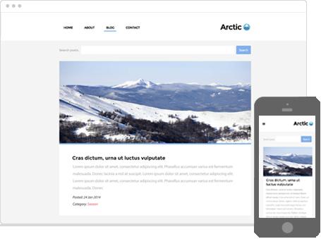 Szablon dostępny dla wersji Kreator Profesjonalny - Arctic
