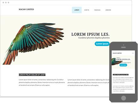 Szablon dostępny dla wersji Kreator Profesjonalny - Macaw Limited