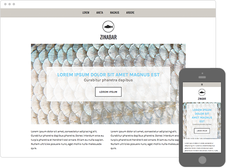 Szablon dostępny dla wersji Kreator Profesjonalny - Zinabar