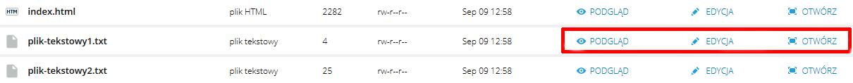 WebFTP - Przykładowy widok przycisków dostępnych obok plików i archiwów danych, umieszczonych na serwerze FTP