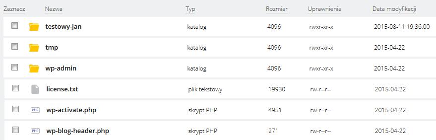 WebFTP - Przykładowy widok ekranu głównego