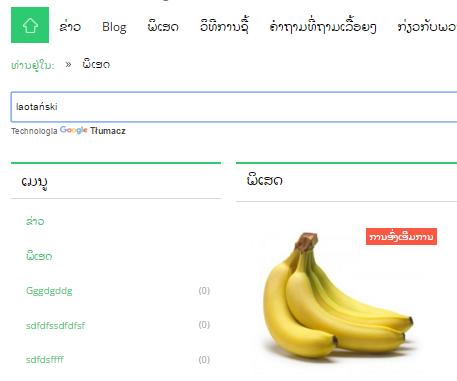 eSklep - Sprawdź działanie modułu Google Translate na głównej stronie sklepu