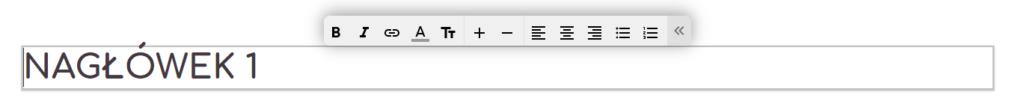 Edytor tekstu w kreatorze WWW