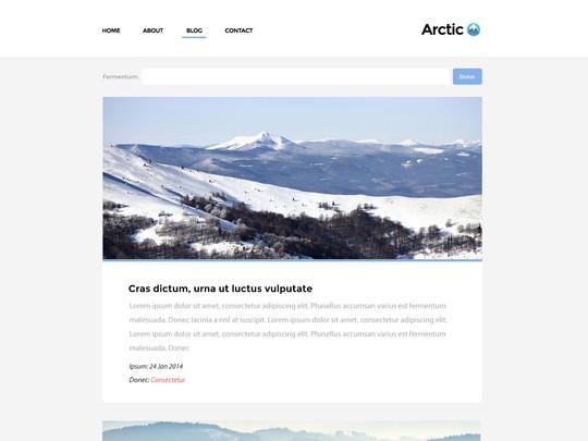 Szablon graficzny dostępny w pakiecie Click Web Unlimited - Arctic