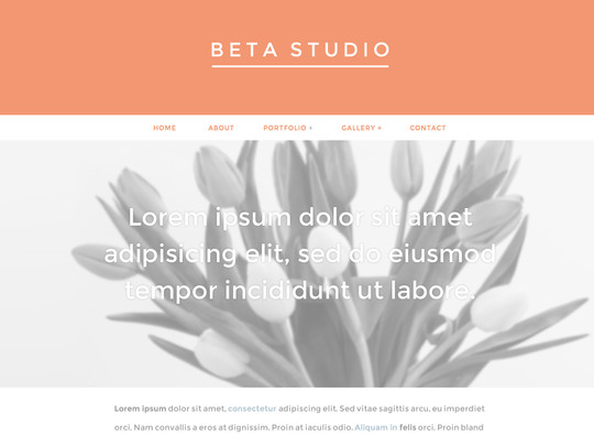 Szablon graficzny dostępny w pakiecie Click Web Unlimited - Beta Studio