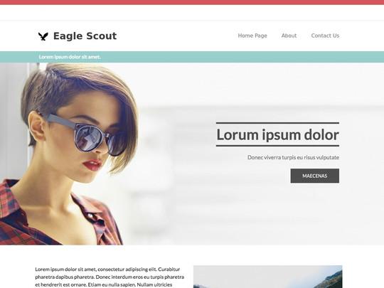 Szablon graficzny dostępny w pakiecie Click Web Unlimited - Eagle Scout