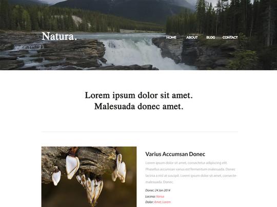 Szablon graficzny dostępny w pakiecie Click Web Unlimited - Natura