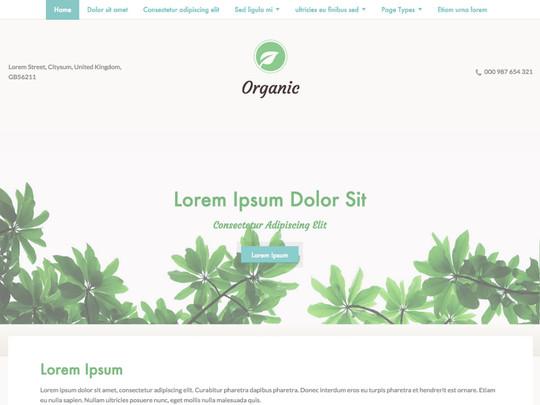 Szablon graficzny dostępny w pakiecie Click Web Unlimited - Organic