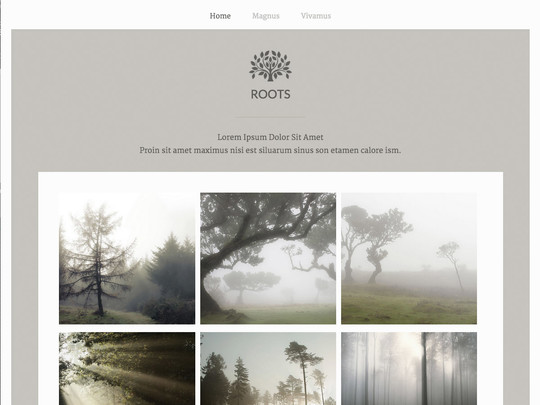 Szablon graficzny dostępny w pakiecie Click Web Unlimited - Roots