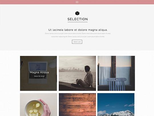 Szablon graficzny dostępny w pakiecie Click Web Unlimited - Selection