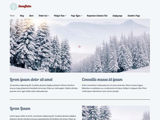 Szablon graficzny dostępny w pakiecie Click Web Unlimited - Snowflake