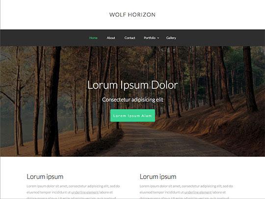Szablon graficzny dostępny w pakiecie Click Web Unlimited - Wolf Horizon