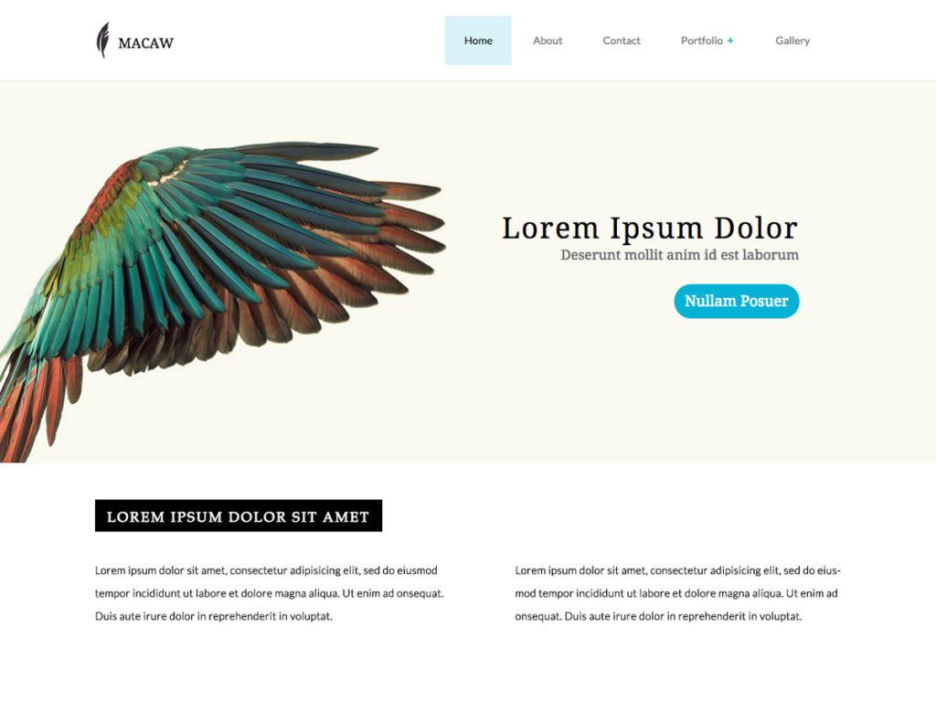 Szablon graficzny dostępny w pakiecie Click Web Premium - Macaw