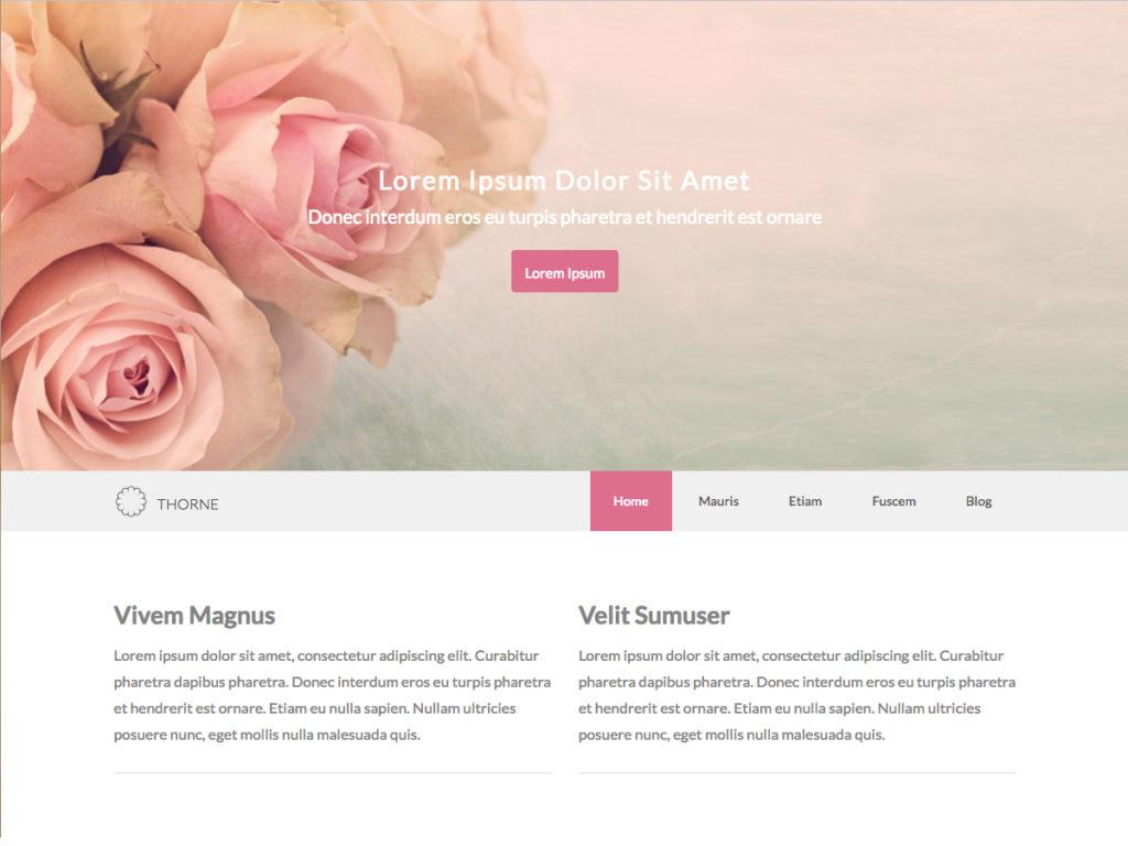 Szablon graficzny dostępny w pakiecie Click Web Premium - Thorne