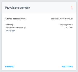 Panel Klienta - Ustawienia domeny - Jak ustawić przekierowanie poczty w domenie.