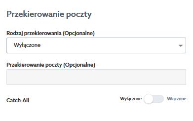 Poczta home.pl - Przekierowanie poczty - W polu Przekierowanie poczty wpisz dodatkową wartość dla wskazanego rodzaju przekierowania