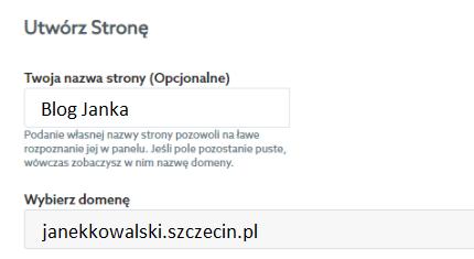 Wybór domeny podczas zakładania strony WWW