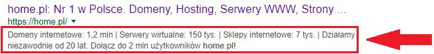 Przykładowy opis strony pojawiający się w wynikach wyszukiwarki Google