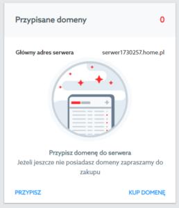 Przypisz domene do usługi serwera