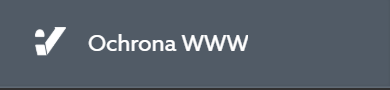 Po zalogowaniu do Panelu klienta home.pl, kliknij sekcję: Ochrona WWW.