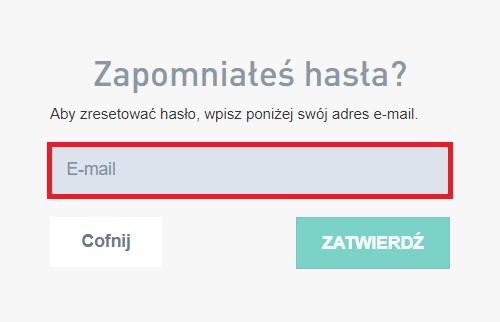 Odzyskiwanie hasła w Panelu Partnera - miejsce na wpisanie e-maila