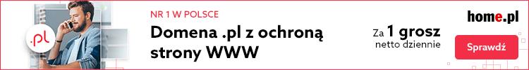Domeny internetowe wraz z ochroną strony WWW