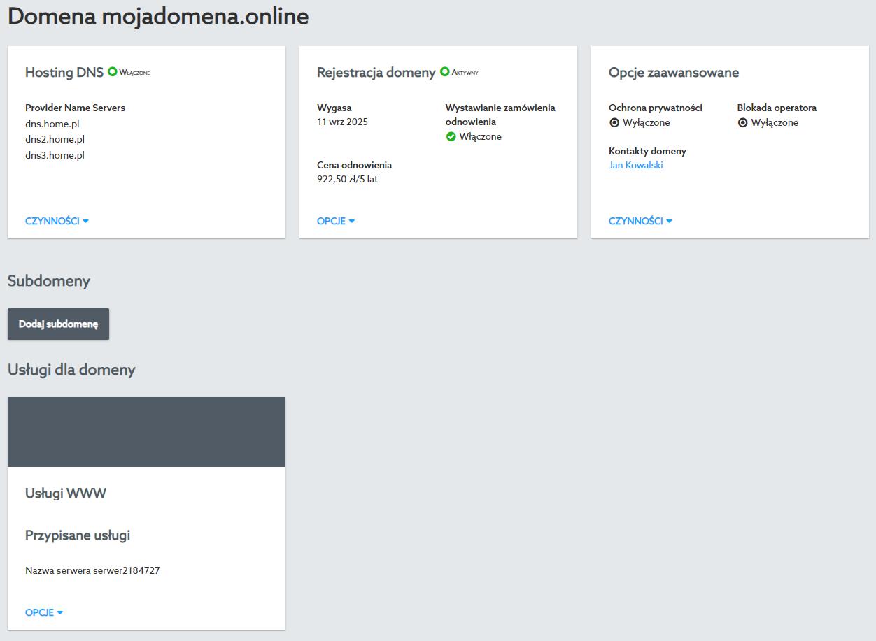 W opcjach domeny znajdziesz informacje o jej statusie, rekordach oraz przypisanym hostingu