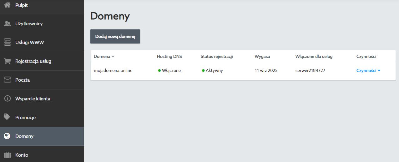 W sekcji Domeny możesz zarządzać wszystkimi domenami zarejestrowanymi na koncie